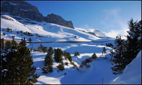 Zdjęcie SZWAJCARIA / wallis / alpy / widoczek alpejski