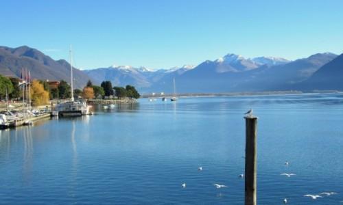Zdjecie SZWAJCARIA / Ticino / Locarno / Lago Maggiore...