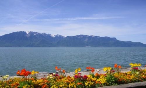 Zdjecie SZWAJCARIA / Vaud / Vevey / Jezioro Genewskie