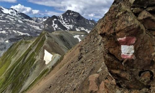 Zdjecie SZWAJCARIA / alpy / Przełęcz Stelvio  ciut wyżej :) / w drodze na Piz Cotschen
