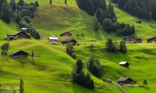 Zdjecie SZWAJCARIA / Berno / Frutigen / Szwajcarskie Klimaty