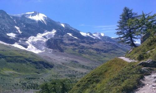 Zdjecie SZWAJCARIA / Alpy / Dolina Lotschentaler / Górskie rejony