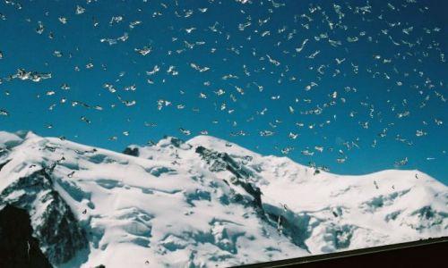 Zdjecie SZWAJCARIA / Alpy / Chamonix / Mont Blanc
