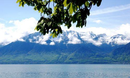 Zdjęcie SZWAJCARIA / brak / Vevey / jezioro genewskie