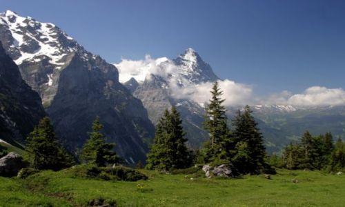 Zdjęcie SZWAJCARIA / Jungfrau / Grindelwald / Swiss2