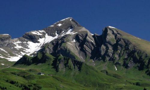 Zdjecie SZWAJCARIA / Jungfrau / Grindelwald / Swiss7