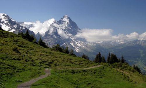 Zdjęcie SZWAJCARIA / Jungfrau / Grindelwald / Swiss8