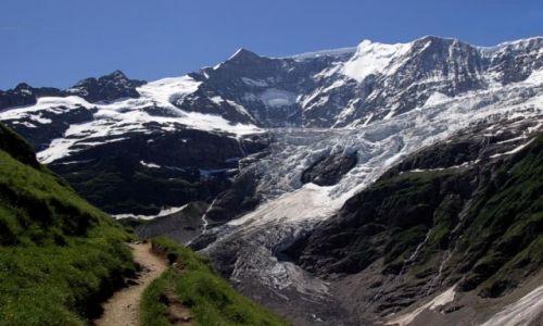Zdjęcie SZWAJCARIA / Jungfrau / Grindelwald / Swiss10