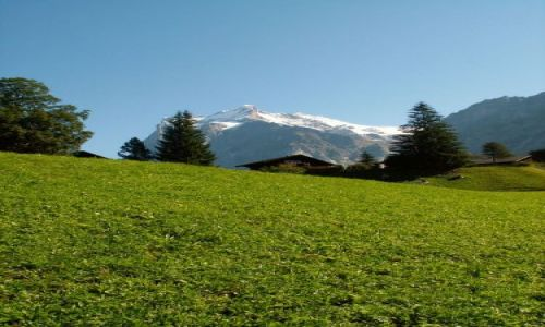 Zdjecie SZWAJCARIA / brak / Prz kolejce na Jungfraujoch / Typowy krajobraz Szwajcarii