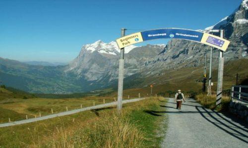 Zdjecie SZWAJCARIA / brak / między Grindelwaldem a Kleine Scheidegg / Na szlaku 2