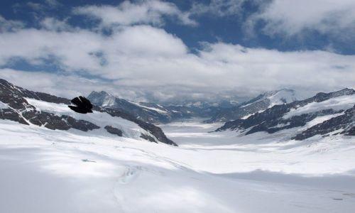 Zdjecie SZWAJCARIA / brak / Lodowiec Aletsch  / Jungfraujoch
