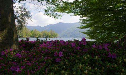 Zdjęcie SZWAJCARIA / - / Lugano / Lugano