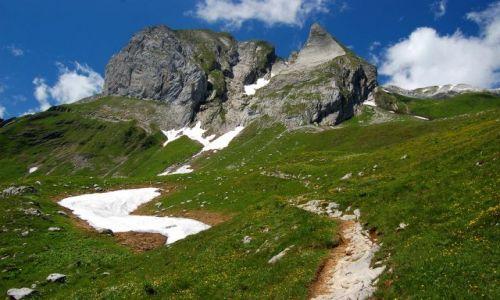 Zdjecie SZWAJCARIA / Alpy Appenzellskie / Alpstein / W�r�d alpejskic