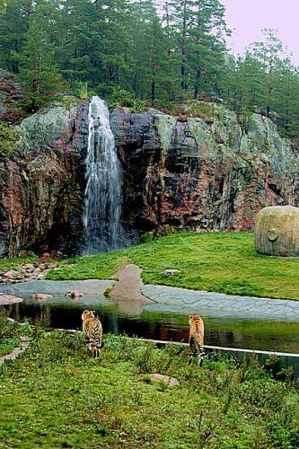 Zdjęcia: nadbałtyckie zoo, okolice Norrkoping, Jak w raju, SZWECJA