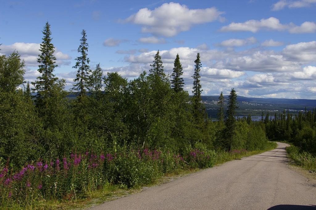 Zdjęcia: Góra Dundret, Laponia, Dundret, SZWECJA