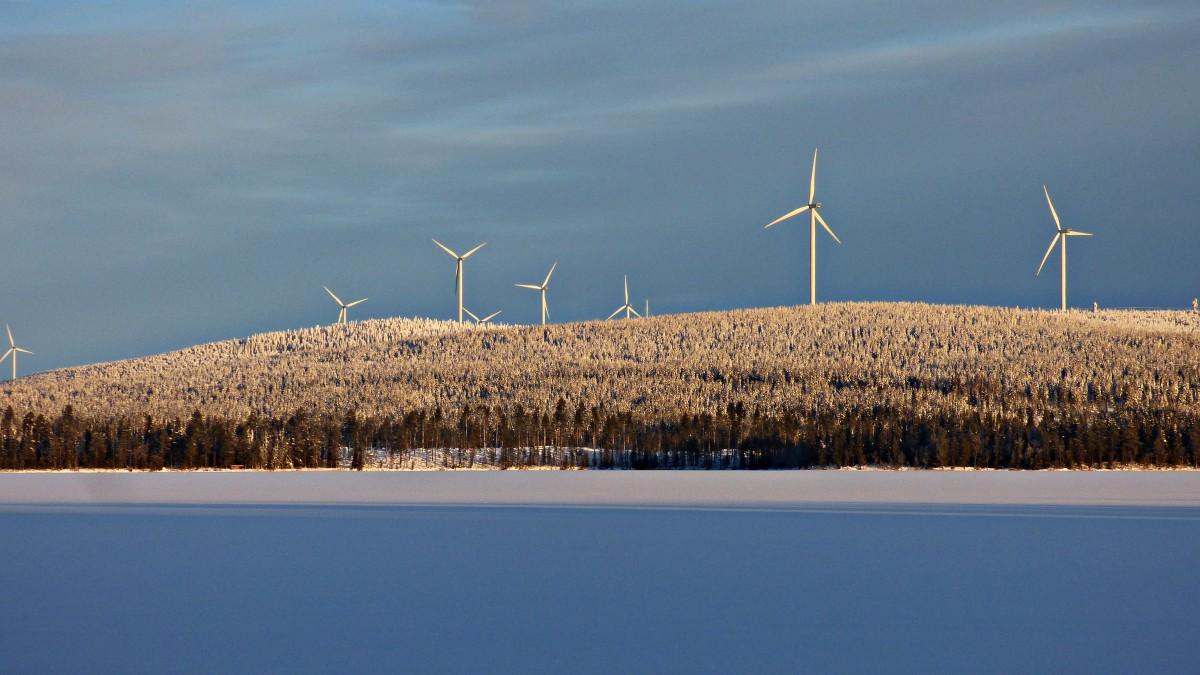 Zdjęcia: Laponia, Vasterbotten, LAPOŃSKA ZIMA, SZWECJA