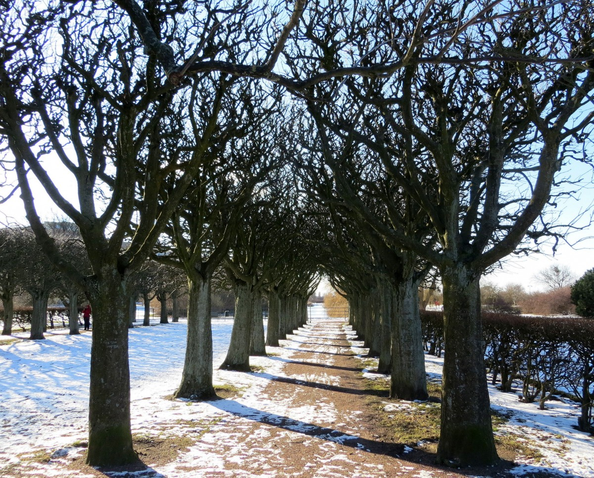 Zdjęcia: Malmö, Skania, jeszcze w zimowym śnie..., SZWECJA
