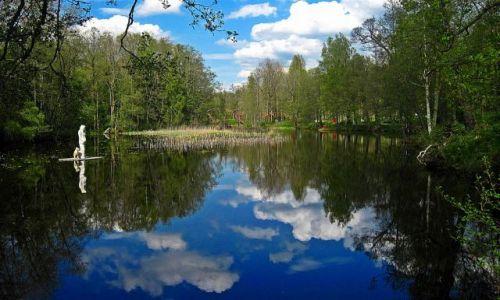 Zdjecie SZWECJA / VASTMANLAND / ANGELSBERG / SZTUKA  W  PLENERZE