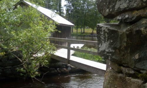 Zdjęcie SZWECJA / Kronobergs lan / W leśnej głuszy  / Wyprawa rowerowa po Szwecji
