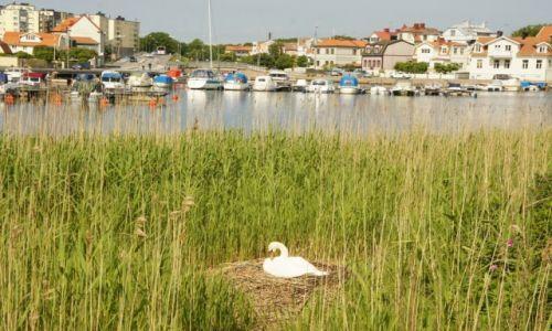 Zdjęcie SZWECJA / Blekinge / Karlskrona / Karlskrona