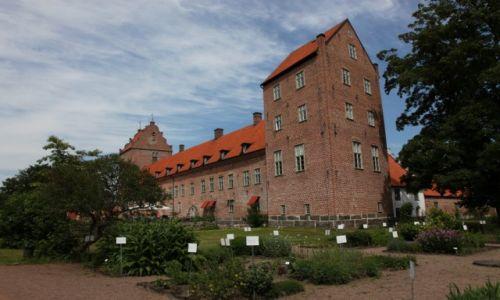 Zdjecie SZWECJA / Skania / Bäckaskog / Zamek w Bäckaskog