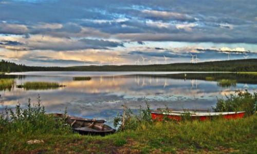 Zdjecie SZWECJA / Vasterbotten / Okolice Mala-Laponia / Intruzi