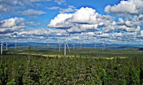 Zdjęcie SZWECJA / Vasterbotten / Okolice Mala-Laponia / Lapońskie wiatraki
