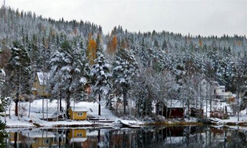 Zdjęcie SZWECJA / Vasterbotten / OKOLICE NORSJO-LAPONIA / Dziwna jesień