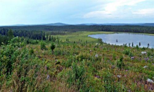 Zdjęcie SZWECJA / Vasterbotten / Okolice Lycksele-Laponia / Laponia