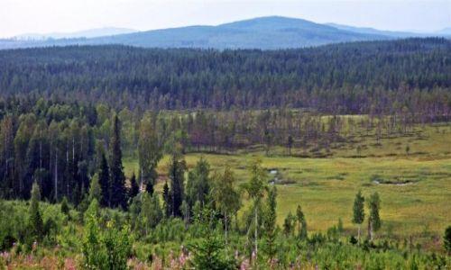 Zdjęcie SZWECJA / Vasterbotten / Okolice Lycksele-Laponia / Laponia 2