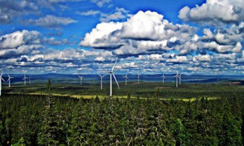 Zdjęcie SZWECJA / Vasterbotten / Okolice Mala-Laponia / Ingerencja
