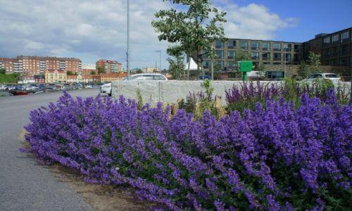 Zdjęcie SZWECJA /  Blekinge / Karlskrona / Kolorowe ulice