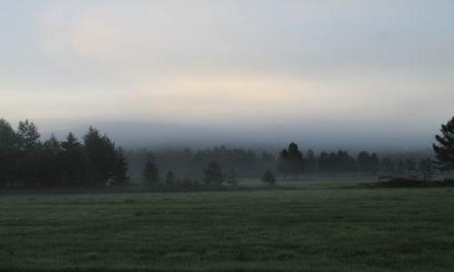 Zdjecie SZWECJA / Sundsvall / Droga 363 / Mgła