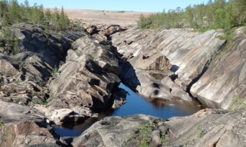 SZWECJA / za Jokkmok / Muddus Nationalpark / Północna Szwecja