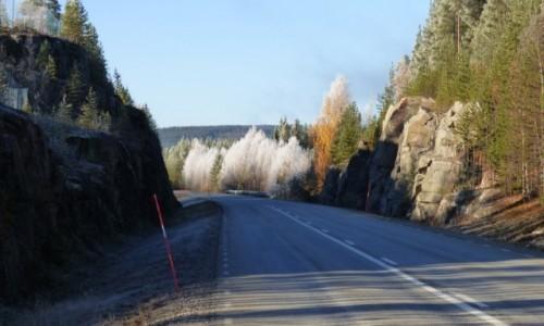 Zdjecie SZWECJA / Vasterbotten / Okolice Lycksele-Laponia / Lapońskie barwy