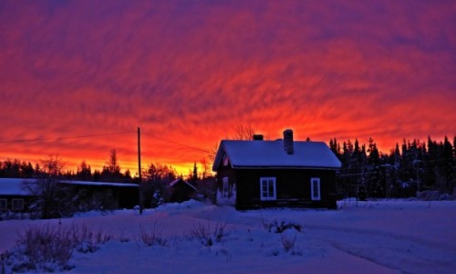Zdjęcie SZWECJA / Vasterbotten / Laponia / LAPOŃSKA ZIMA