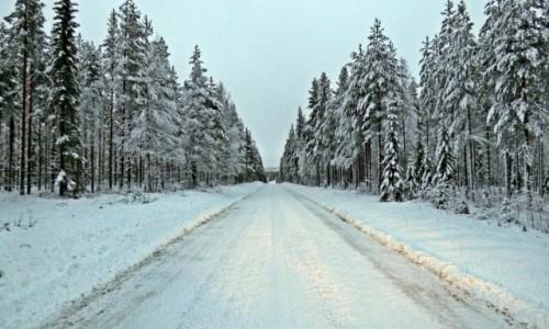 Zdjecie SZWECJA / Vasterbotten / Okolice Mala-Laponia / Laponia zimą