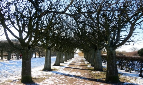 Zdjęcie SZWECJA / Skania / Malmö / jeszcze w zimowym śnie...