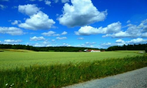 Zdjecie SZWECJA / Sodertalje / Jarna / Szwedzka wioska
