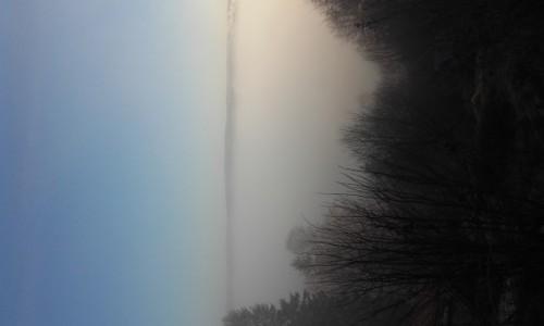 Zdjecie SZWECJA / goteborg / Na skarpie / mgla