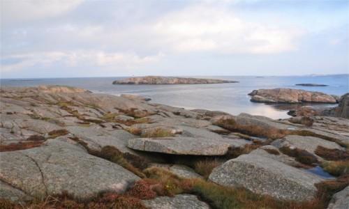 Zdjecie SZWECJA / Szwecja zachodnia / - / Wybrzeże szkierowe w Szwecji