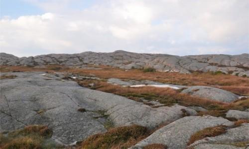 Zdjecie SZWECJA / Vastra Gotaland / Smögen / Surowy krajobraz Szwecji