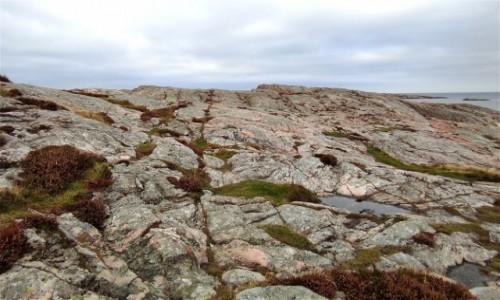 Zdjecie SZWECJA / Vastra Gotaland / - / Surowy krajobraz zachodniej Szwecji