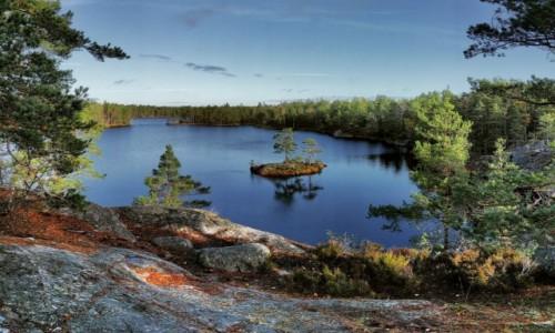 Zdjecie SZWECJA / region Sztokholm / Tyresta / Szwedzkie krajobrazy, Park Narodowy Tyresta
