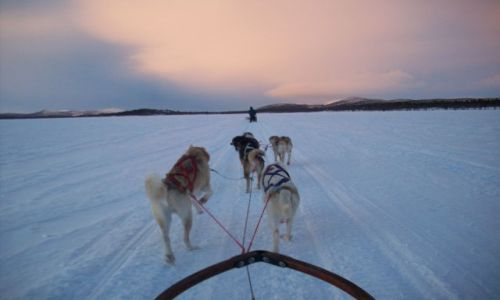 Zdjęcie SZWECJA / Laponia / Kiruna / Feel it..