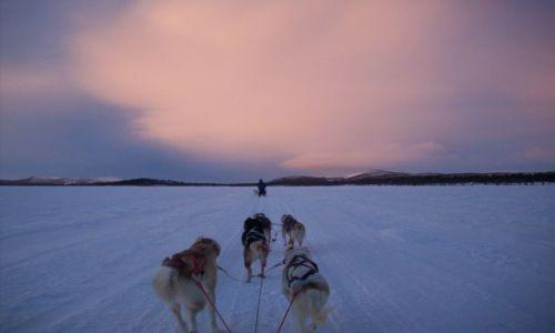Zdjęcie SZWECJA / Laponia / Kiruna / Sen o wolności..