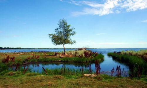 Zdjęcie SZWECJA / Blekinge / Orranas / Szwedzkie nadmorze 4
