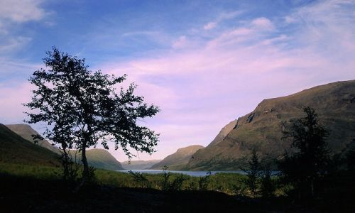 Zdjecie SZWECJA / Lappland / Kajtumjaure / pięknie tu