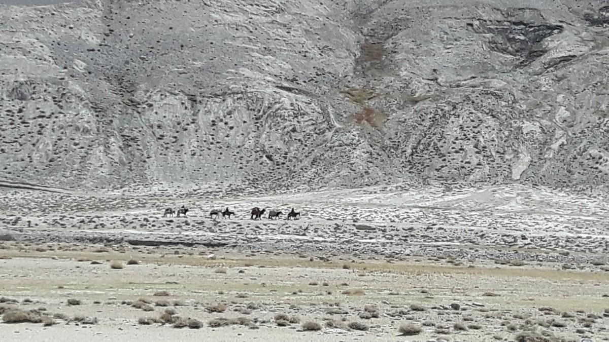 Zdjęcia: Tadżykistan, Tadzykistan, fot1, TADŻYKISTAN