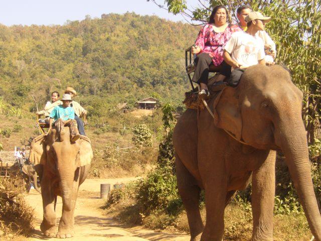 Zdjęcia: Chiang Mai, daleka północ Tajlandii, ., TAJLANDIA